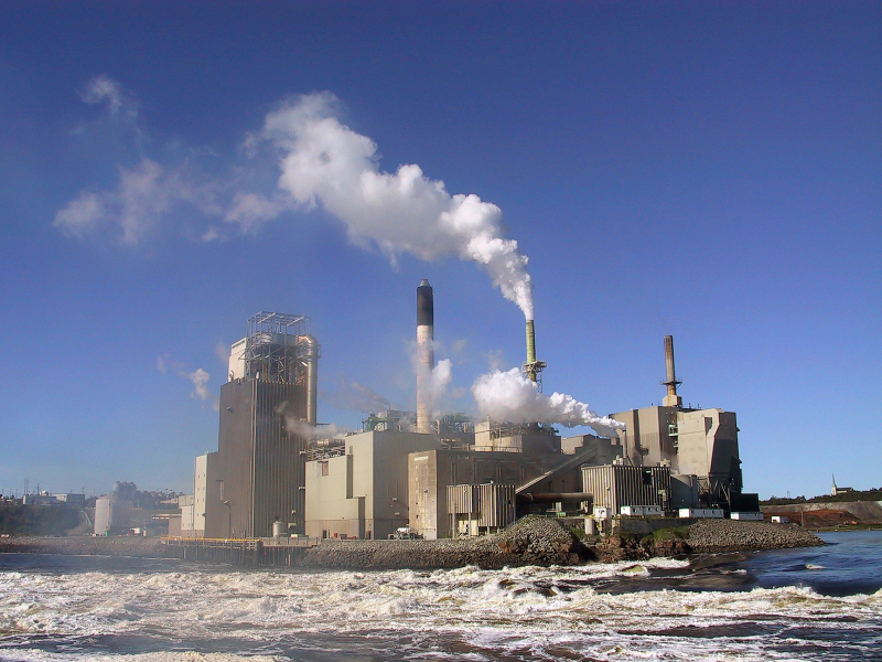 Global unions target safety at work in pulp, paper, graphical and
