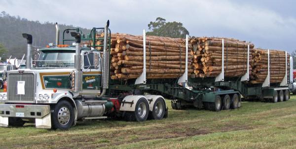 Global Trade in Lumber Amounts to Big Bucks